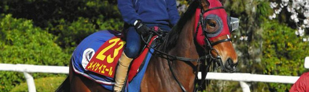 【!?】桜花賞に挑む競走馬・メイケイエールの馬主さん「ウマ娘に加えてほしい」@オタク.com