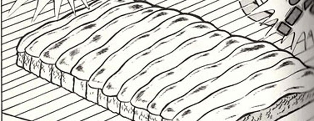 【画像】この漫画、とんでもない方法で寿司を握ってしまうwww@ああ言えばForYou